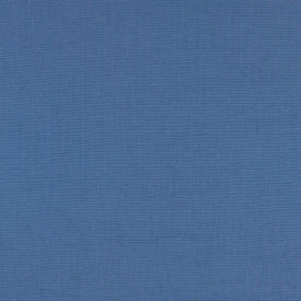 Petry Blue Fabric